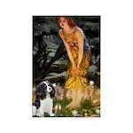 Fairies / Cavalier Rectangle Magnet (10 pack)