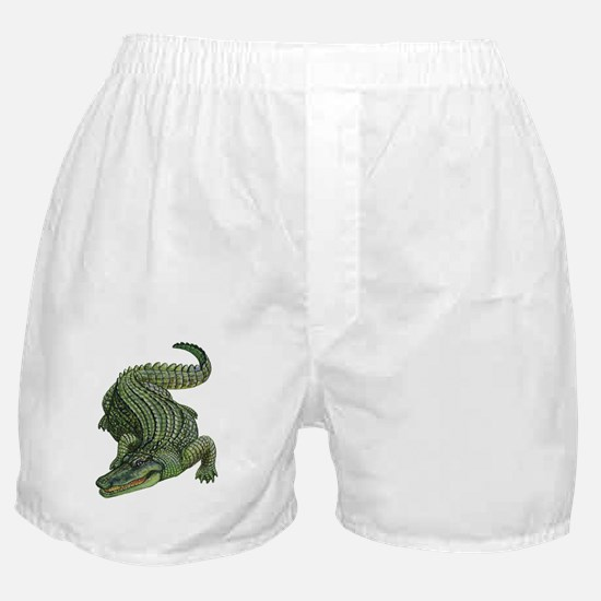 Cute Komodo dragon Boxer Shorts