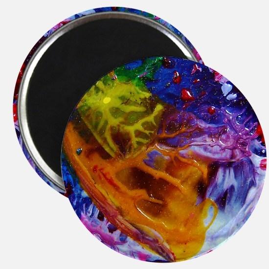 Baran Abstract Magnets