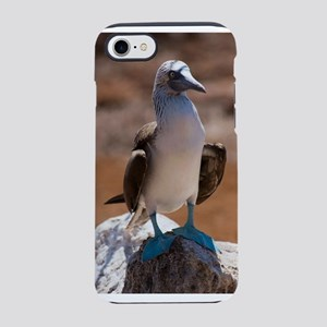 Blue-footed Booby iPhone 8/7 Tough Case