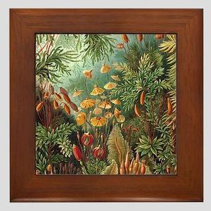 Vintage Plants Decorative Framed Tile