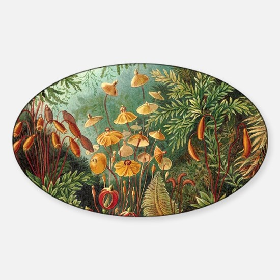Vintage Plants Decorative Decal