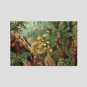 Vintage Plants Decorative Magnets