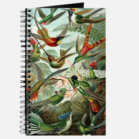 Vintage Hummingbirds Decorative Journal