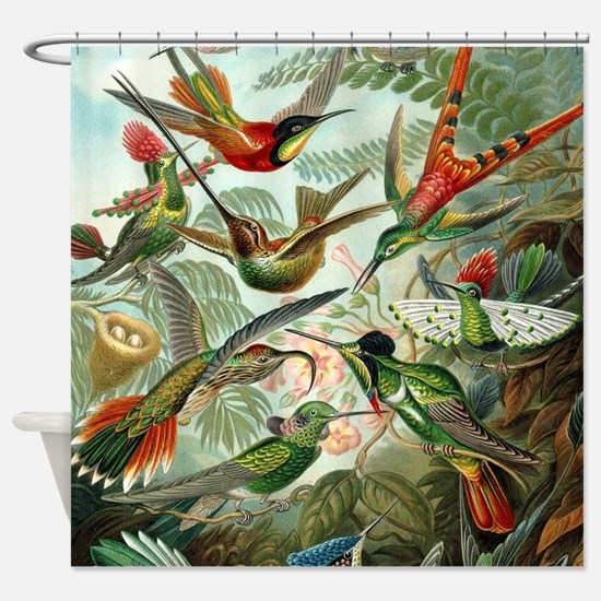 Vintage Hummingbirds Decorative Shower Curtain