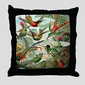 Vintage Hummingbirds Decorative Throw Pillow