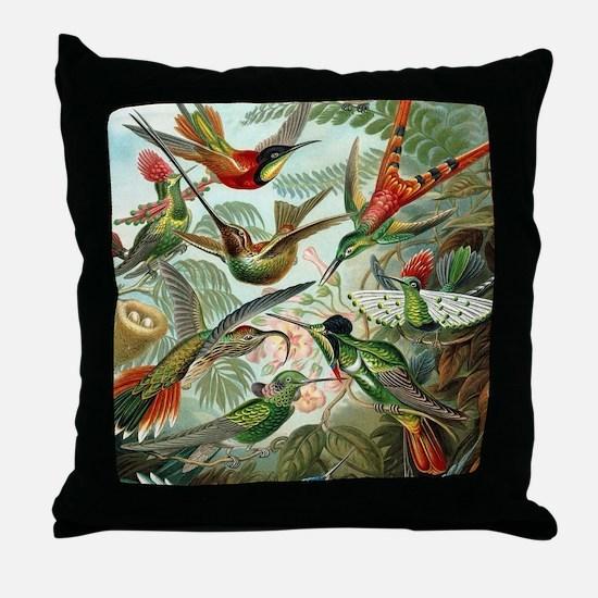 Vintage Hummingbirds Decorative Throw Pillow
