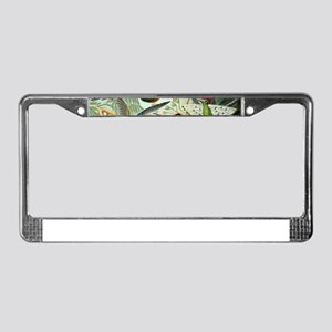 Vintage Hummingbirds Decorativ License Plate Frame
