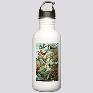 Vintage Hummingbirds D Stainless Water Bottle 1.0L