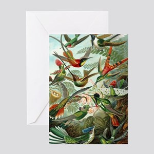 Vintage Hummingbirds Decorative Greeting Cards
