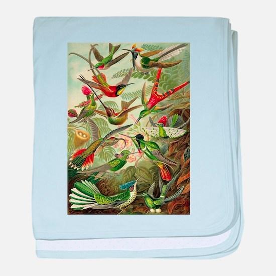 Vintage Hummingbirds Decorative baby blanket