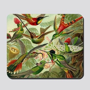 Vintage Hummingbirds Decorative Mousepad