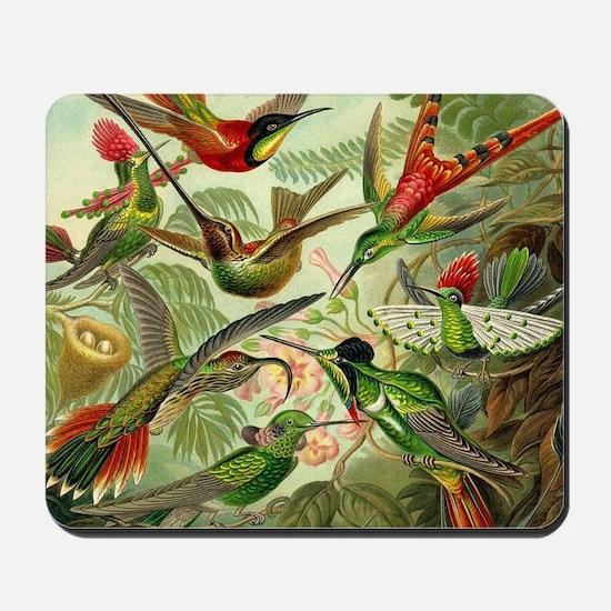 Vintage Hummingbirds Decorative Mousepad