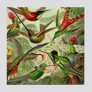 Vintage Hummingbirds Decorative Tile Coaster