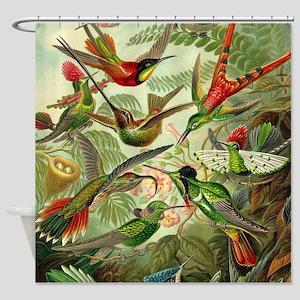Vintage Hummingbirds Decorative Shower Curtain