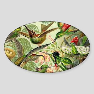 Vintage Hummingbirds Decorative Sticker