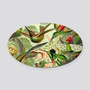 Vintage Hummingbirds Decorative Oval Car Magnet