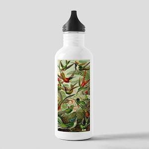 Vintage Hummingbirds D Stainless Water Bottle 1.0L