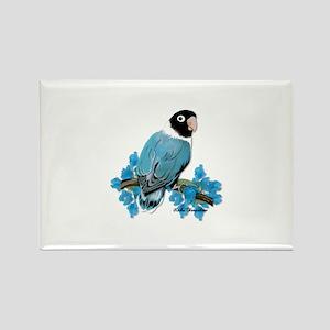 Blue Masked Lovebird Magnets