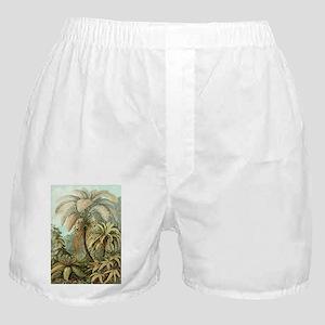 Vintage Tropical Palm Boxer Shorts