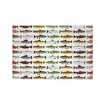 14 Trout and Salmon Pattern cp Magnets