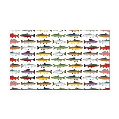 14 Trout and Salmon Pattern cp Rectangle Car Magne