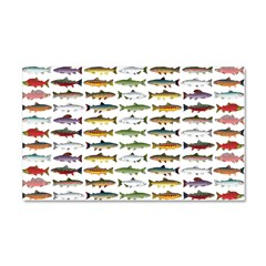 14 Trout and Salmon Pattern cp Car Magnet 20 x 12