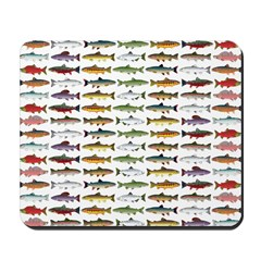 14 Trout and Salmon Pattern cp Mousepad