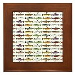 14 Trout and Salmon Pattern cp Framed Tile