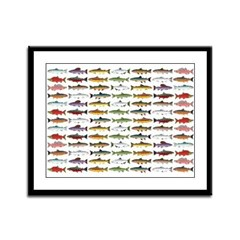 14 Trout and Salmon Pattern cp Framed Panel Print