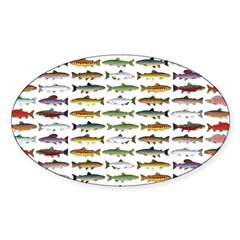 14 Trout and Salmon Pattern cp Decal