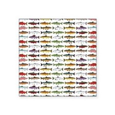 14 Trout and Salmon Pattern cp Sticker