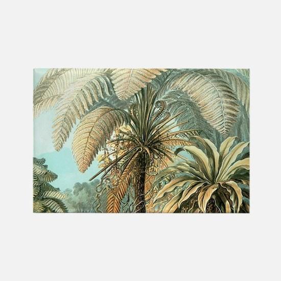 Vintage Tropical Palm Magnets