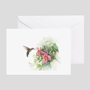 Hummingbird greeting cards cafepress hummingbird greeting cards m4hsunfo