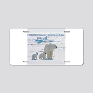 Polar Bears Aluminum License Plate