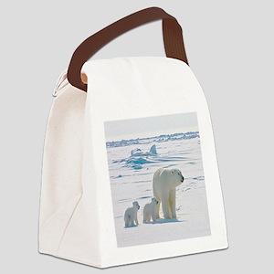Polar Bears Canvas Lunch Bag