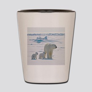 Polar Bears Shot Glass
