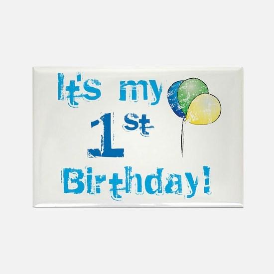 It's My 1st Birthday Rectangle Magnet
