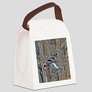 Drake mallard in flight Canvas Lunch Bag