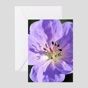 Geranium Greeting Cards
