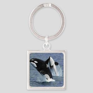 Killer Whales Keychains