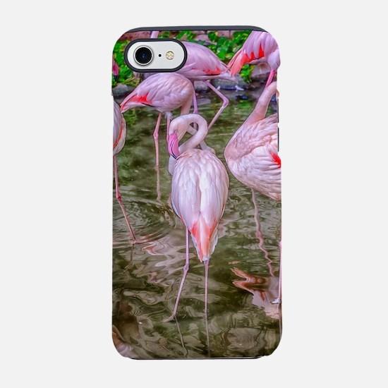 Pink Flamingos iPhone 8/7 Tough Case