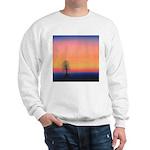 205.vanishing..? Sweatshirt
