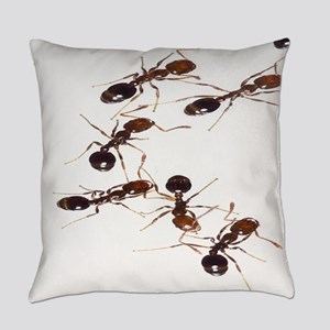 Fire Ants Everyday Pillow