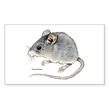 Mouse Rodent Rectangle Sticker
