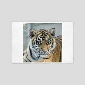Tiger011 4' x 6' Rug