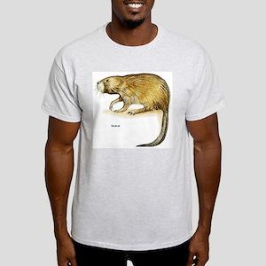 Muskrat Rodent (Front) Ash Grey T-Shirt