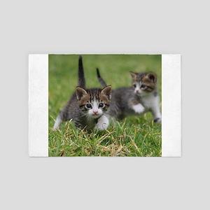 Cat_2015_0102 4' x 6' Rug