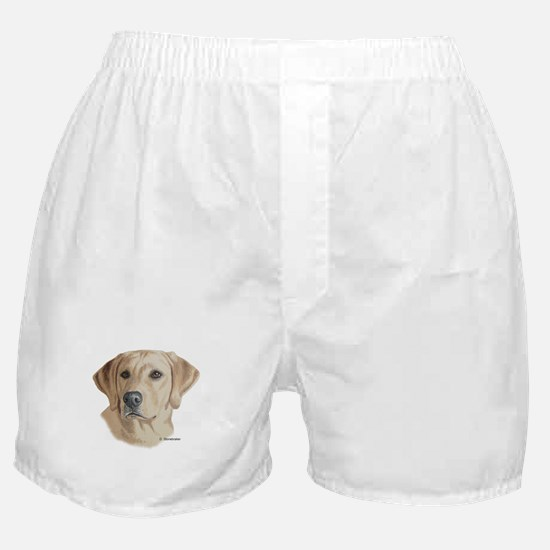 Young Yellow Lab Boxer Shorts