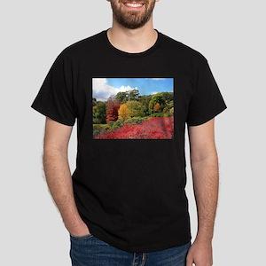 Autumn splendour, Adelaide Hills T-Shirt